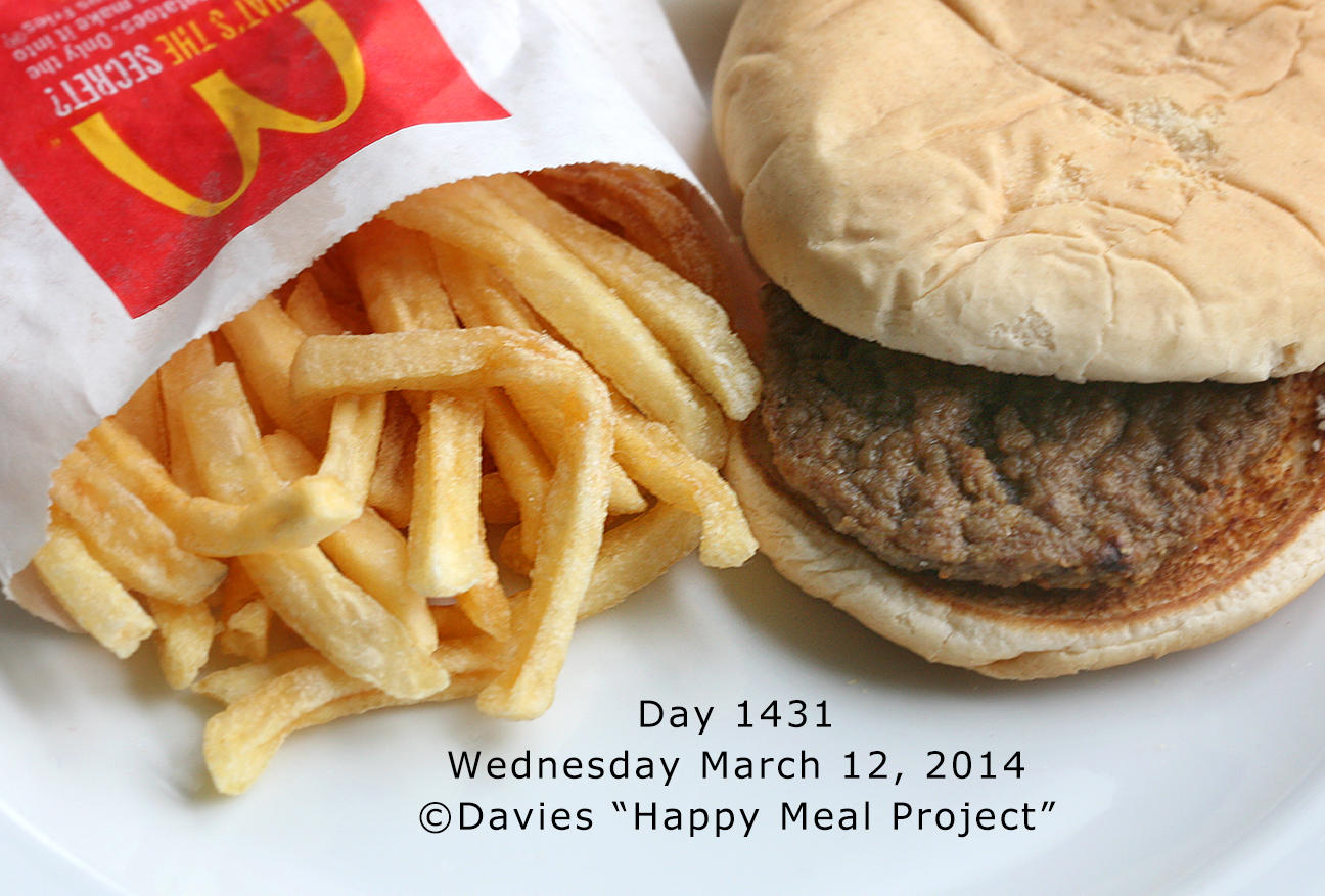 happy meal project Why we're scared of happy meals  nyc artist sally davies did, creating the happy meal art project that provides evidence that mickey d's food really is the worst shiz you can put in your.
